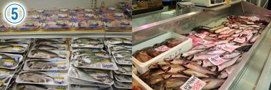 その日仕入れた新鮮な地物の魚が並ぶ